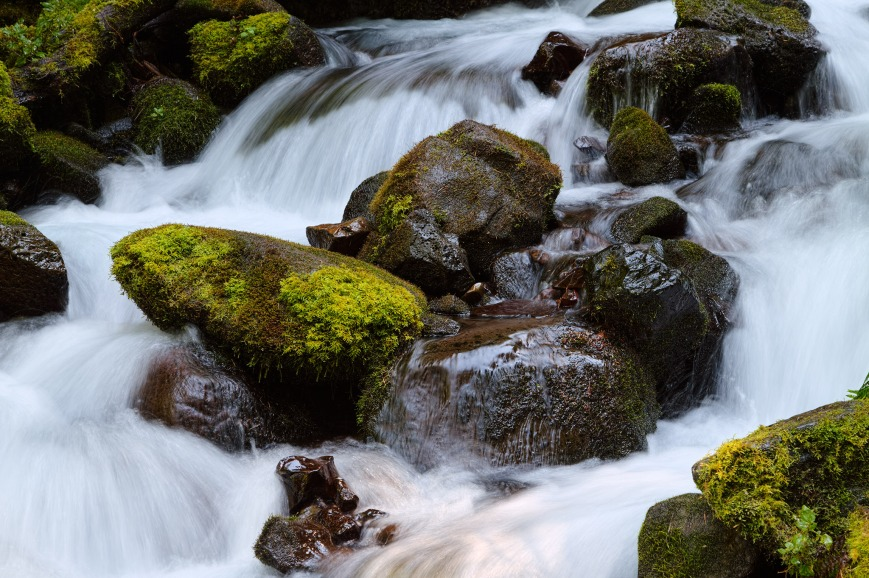 A mountain stream flows over moss-covered rocks in the Columbia River Gorge